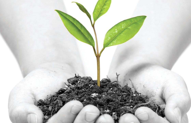 nachhaltigkeit-e1340305754675